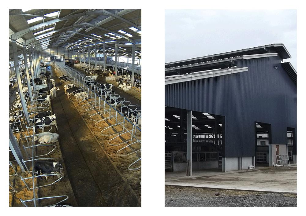 middleton-of-rora-shand-building-design-ltd-3