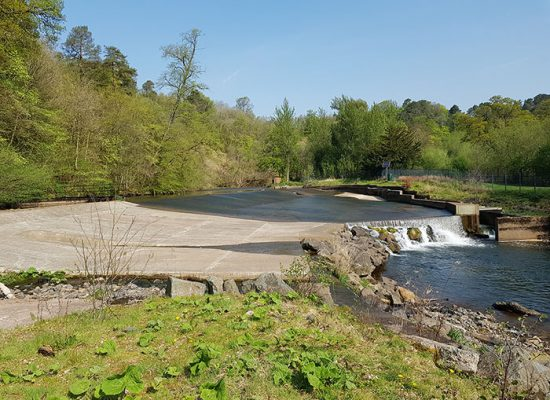 Conservation of Catrine Weir